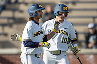 Michigan Wolverines outfielder Jordan Brewer (22) is greeted by teammate Blake Nelson (10) after scoring against the San Jose State Spartans on March 27, 2019 in Game 1 of the NCAA baseball doubleheader at Ray Fisher Stadium in Ann Arbor, Michigan. Michigan defeated San Jose State 1-0. (Andrew Woolley/Four Seam Images)