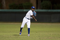 AZL Dodgers right fielder Rolando Lebron (13) warms up between innings of an Arizona League game against the AZL White Sox at Camelback Ranch on July 3, 2018 in Glendale, Arizona. The AZL Dodgers defeated the AZL White Sox by a score of 10-5. (Zachary Lucy/Four Seam Images)
