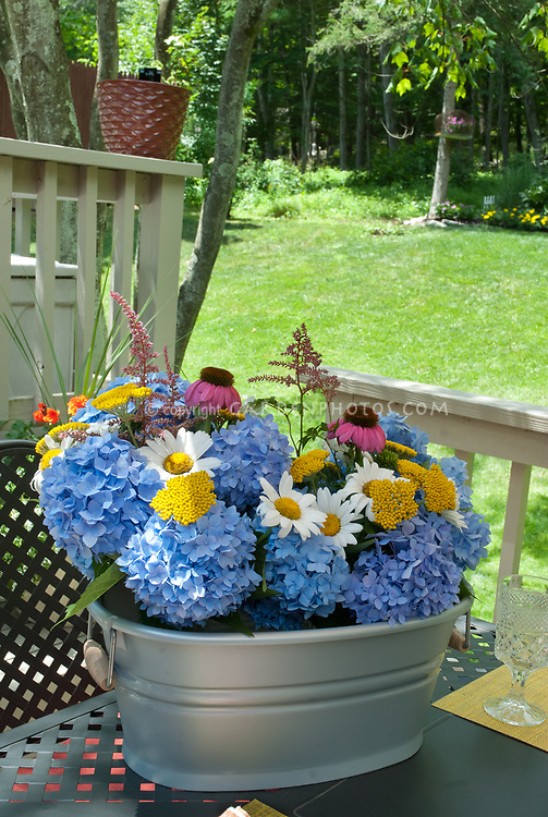 Hydrangea, daisy Leucanthemum, Achillea yarrow, Echinacea purple coneflower, Astilbe, cut flowers in galvanized container
