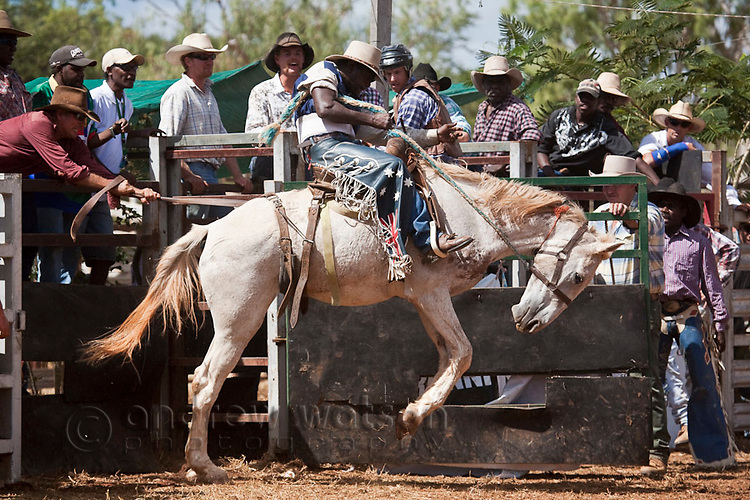 Indigenous stockman riding in Saddle bronc competition.  Chillagoe Rodeo, Chillagoe, Queensland, Australia