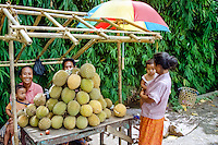 Bali, Buleleng, Singaraja. A family selling durian south of Singaraja. The taste of this characteristic fruit is definitely better than its smell.