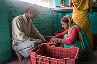 Collection centre owners and farmers Asha Devi, 23, and her husband Ganesh Kumar Singh, 30, sort through vegetables brought in by other producer group farmers to be sold to the collection centre in Machahi village, Muzaffarpur, Bihar, India on October 27th, 2016. They rent out a part of their house to be used as a collection centre for Producer Group farmers. Non-profit organisation Technoserve works with women vegetable farmers in Muzaffarpur, providing technical support in forward linkage, streamlining their business models and linking them directly to an international market through Electronic Trading Platforms. Photograph by Suzanne Lee for Technoserve