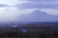 The Morning mist of Autumn rises from a pond on the Palmer Hayflats of Southcentral Alaska, obscuring Pioneer peak in the distance.