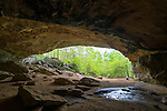 Petit Jean State Park, Arkansas:<br /> Rock House Cave interior.