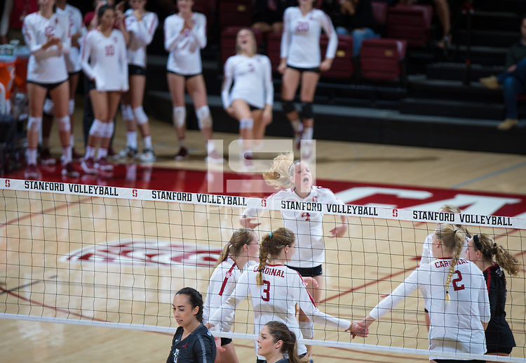STANFORD, CA - October 12, 2018: Meghan McClure, Jenna Gray, Holly Campbell, Kathryn Plummer, Morgan Hentz at Maples Pavilion. No. 2 Stanford Cardinal swept No. 21 Washington State Cougars, 25-15, 30-28, 25-12.