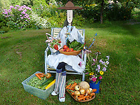 Garden statue and scarecrow dressed up with harvest from community garden, Maine, USA