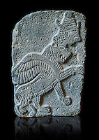 9th century BC stone Neo-Hittite/ Aramaean Orthostats from Palace Temple of the Aramaean city of Tell Halaf in northeastern Syria close to the Turkish border. The Orthostats are in a Neo Hittite style and depict mythical animals and figures that have magical properties. Pergamon Museum, Berlin . Museum Inv No: VA 8844,