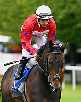 Jailbreak ridden by Pat Hobbs  goes down to the start of The Molson Coors Handicap  during Evening Racing at Salisbury Racecourse on 11th June 2019