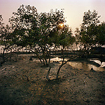 Sudhanya Khali, Unesco reserve in the Sundarban with more than 100 islands,home to the largest mangrove forest in the world. Sunset at the Sunderban, 9 December 2010...