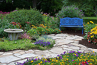 63821-21620 Blue bench, bird bath, and stone path in flower garden.  Black-eyed Susans (Rudbeckia hirta)  Red Dragon Wing Begonias (Begonia x hybrida) Homestead Purple Verbena, New Gold Lantana, Red Verbena, Butterfly Bushes, Sedum, Raspberry Wine Bee Monarda Bee Balm,  Marion Co., IL