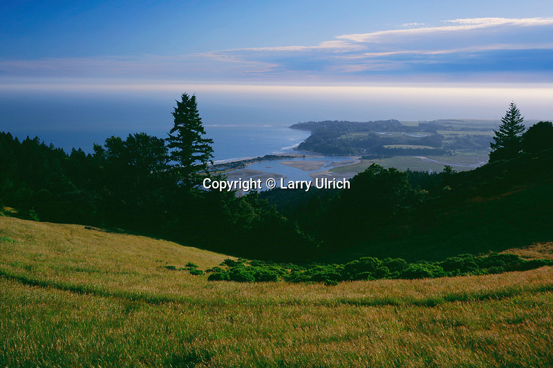 Bolinas Lagoon<br />