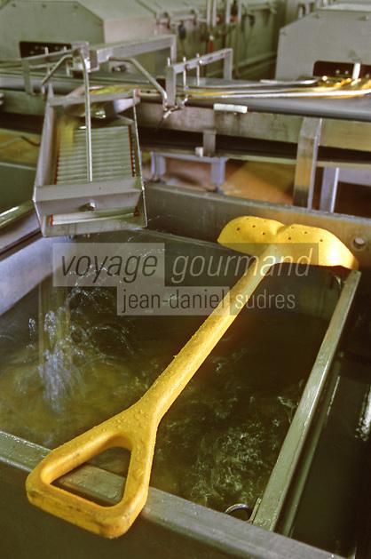 Europe/France/Bretagne/29/Finistère/Plovezet: Conserverie de Sardines Capitaine Cook / Sardines Label Rouge - chaine de lavage des boites