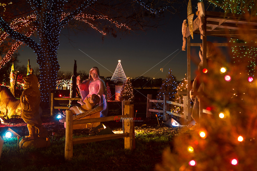 Zilker Holiday Tree as seen through the Zilker Park Trail of Lights Nativity Scene