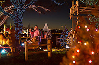 Zilker Holiday Tree as seen through the Zilker Park Trail of Lights Nativity Scene