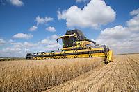Harvesting winter barley Lincoln Heath