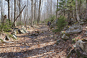 Remnants of the Lincoln Brook Branch of the East Branch & Lincoln Railroad (1893-1948) in the Pemigewasset Wilderness of the White Mountains in New Hampshire. This branch of the railroad began near Camp 10, crossed Franconia Brook, and then traveled around the southern end of Owls Head Mountain to Camps 11 and 12 in the Lincoln Brook Valley.