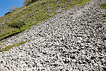 Scree slope of loose weathered rock, Gordale Scar carboniferous limestone gorge, Yorkshire Dales national park, England, UK