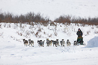 Musher Jeff King just outside Candle, the half way point of the 2008 All Alaska Sweepstakes sled dog race.
