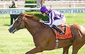 Cape Blanco wins Man O' War at Belmont Park - 7/9/11