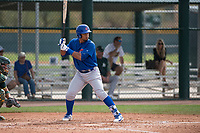 Chicago Cubs third baseman Wladimir Galindo (19) at bat during a Minor League Spring Training game against the Oakland Athletics at Sloan Park on March 13, 2018 in Mesa, Arizona. (Zachary Lucy/Four Seam Images)