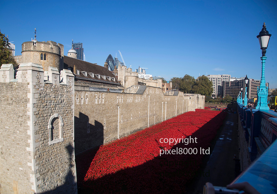 Pic shows: Huge crowds again today at the Blood Swept Lands and Seas of Red<br /> Poppy installation at the Tower of London with just days to  go before it is due to be removed.<br /> <br /> View from Tower Bridge<br /> <br /> <br /> <br /> Pic by Gavin Rodgers/Pixel 8000 Ltd