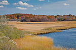 Autumn colors Sapowet Marsh in Tiverton, RI, USA