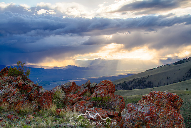 Idaho, East Central, Salmon, Leadore. Evening sun lights the Lemhi Valley as seen from atop a ridge in the Beaverhead Mountains of the Salmon Challis National Forest. Lemhi Range distant.