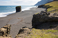 Am schwarzen Strand in der Nähe von Laekjavik, Lækjavik im Osten von Island, Basaltfelsen an der Küste, Laekjavik Coast