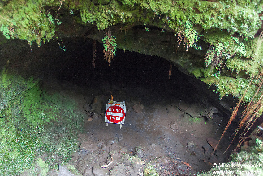 """""""Do Not Enter"""" sign at closed section of Thurston Lava Tube in Hawaii Volcanoes National Park, Big Island, Hawaii"""