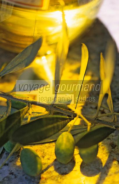 Europe/France/Corse/2A/Corse-du-Sud/Sollacaro: L'huile d'olive de Paul Luccioni