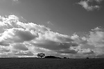 Europa, DEU, Deutschland, Nordrhein Westfalen, NRW, Rheinland, Niederrhein, Toenisberg, Schaephuysener Hoehen, Himmel, Wolken, Baeume, Kategorien und Themen, Natur, Umwelt, Landschaft, Jahreszeiten, Stimmungen, Landschaftsfotografie, Landschaften, Landschaftsphoto, Landschaftsphotographie, Wetter, Himmel, Wolken, Wolkenkunde, Wetterbeobachtung, Wetterelemente, Wetterlage, Wetterkunde, Witterung, Witterungsbedingungen, Wettererscheinungen, Meteorologie, Bauernregeln, Wettervorhersage, Wolkenfotografie, Wetterphaenomene, Wolkenklassifikation, Wolkenbilder, Wolkenfoto<br /> <br /> [Fuer die Nutzung gelten die jeweils gueltigen Allgemeinen Liefer-und Geschaeftsbedingungen. Nutzung nur gegen Verwendungsmeldung und Nachweis. Download der AGB unter http://www.image-box.com oder werden auf Anfrage zugesendet. Freigabe ist vorher erforderlich. Jede Nutzung des Fotos ist honorarpflichtig gemaess derzeit gueltiger MFM Liste - Kontakt, Uwe Schmid-Fotografie, Duisburg, Tel. (+49).2065.677997, <br /> archiv@image-box.com, www.image-box.com]