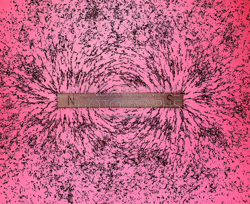 MAGNETIC FIELD OF BAR MAGNET<br /> Demonstrated By Iron Filings