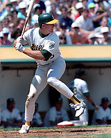 Oakland A's slugger Mark McGuire..<br />