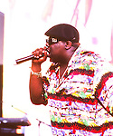 Notorious B.I.G. 1995 Notorious Big....