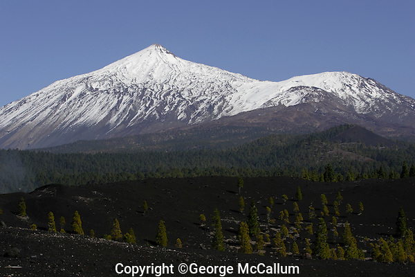 Volcanic landscape on south side of Mount Teide Volcano on Tenerife. Canary Islands, Spain