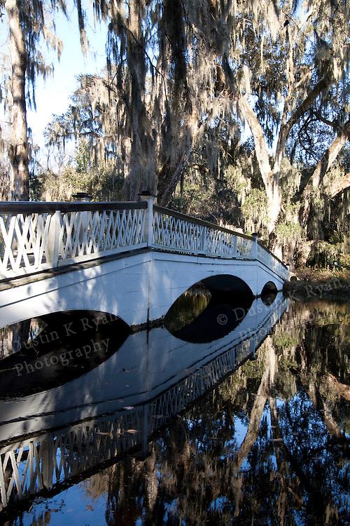 Magnolia Plantation and gardens near Charleston South Carolina foot bridge, reflections, reflection, water, pond, cypress trees