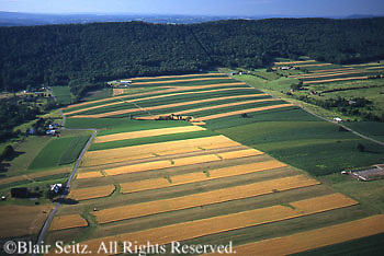 PA Landscapes, Southcentral Pennsylvania, Aerial Photographs, Farmlands, Mixed Cultivation and Contour Farming Berks County, Blue Ridge mts.,