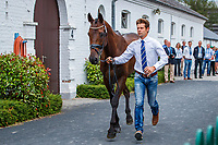 AUS-Christopher Burton presents Quality Purdey during the SAP Cup CICO4*-S Nations' Cup Eventing 1st Horse Inspection. 2019 GER-CHIO Aachen Weltfest des Pferdesports. Thursday 18 July. Copyright Photo: Libby Law Photography