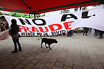 "A dog passes by a banner that reads: ""No to the electoral fraud"" during the National Convention against the imposition of Enrique Pena Nieto in San Salvador Atenco, Mexico state, July 14, 2012. More than two thousand people from twenty five states attended the Convention to plan actions in order to prevent Pena Nieto to take office on December 1, 2012 as they accuse him from buying ballots and money laundering during the elections . Photo by Heriberto Rodriguez"