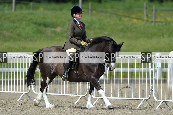Ring 3. BSPS area 15 summer show. Brook Farm training centre. Essex. 20/05/2018. ~ MANDATORY Credit Garry Bowden/Sportinpictures - NO UNAUTHORISED USE - 07837 394578