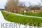 Denis O'Brien runners at the Kerry's Eye Tralee, Tralee International Marathon and Half Marathon on Saturday.