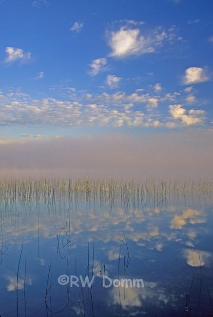 Portage Lake 1