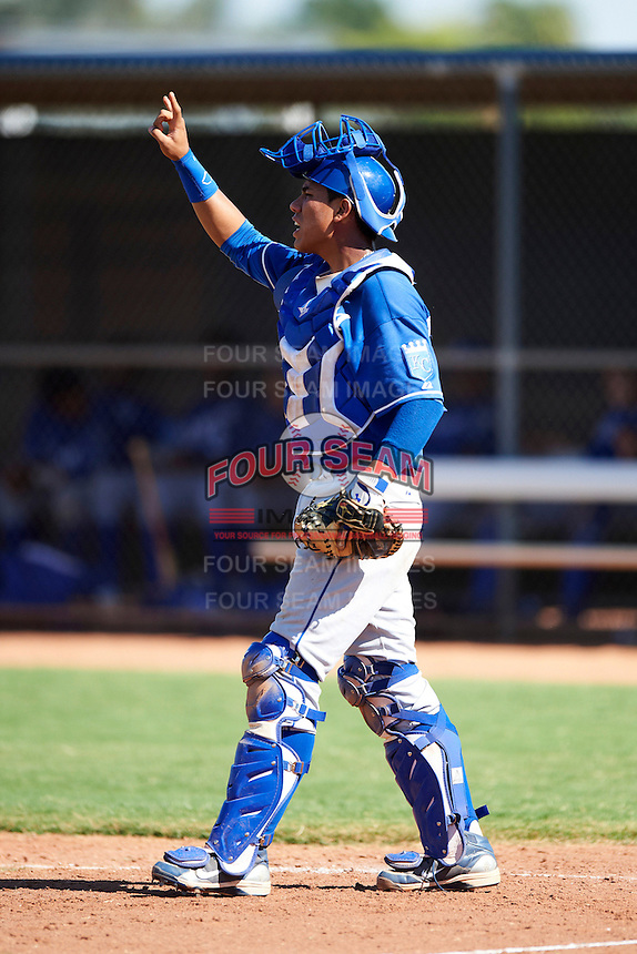 Kansas City Royals minor league catcher Pedro Gonzalez #92 during an instructional league game against the Seattle Mariners at the Peoria Sports Complex on October 2, 2012 in Peoria, Arizona. (Mike Janes/Four Seam Images)
