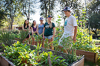 Dylan Bruce '16. Photo from the F.E.A.S.T (Food Energy and Sustainability Team) student-run organic garden at UEPI, Oct. 3, 2015.<br /> (Photo by Marc Campos, Occidental College Photographer)