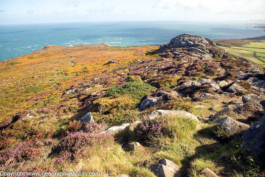 Carn Llidi tor looking north west, St David's Head, Pembrokeshire, Wales