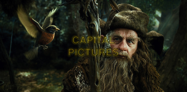 SYLVESTER McCOY.in The Hobbit: An Unexpected Journey (2012).*Filmstill - Editorial Use Only*.CAP/FB.Supplied by Capital Pictures.