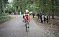 peloton over the cobbles through the forest <br /> <br /> 83rd Nationale Sluitingsprijs Putte-Kapellen 2016 (UCI Europe Tour cat 1.1 / 189km)