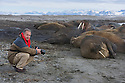 Photographer Theo Allofs near walruses resting on shore (Odobenus rosmarus), June