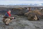 Photographer Theo Allofs near walruses resting on shore (Odobenus rosmarus), June