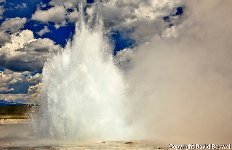 Foutain Geyser, located in the Fountain Paintpot Area of Lower Geyser Basin, Yellowstone National Park, during an eruption.